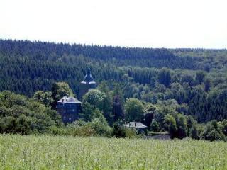 Die Wildenburg